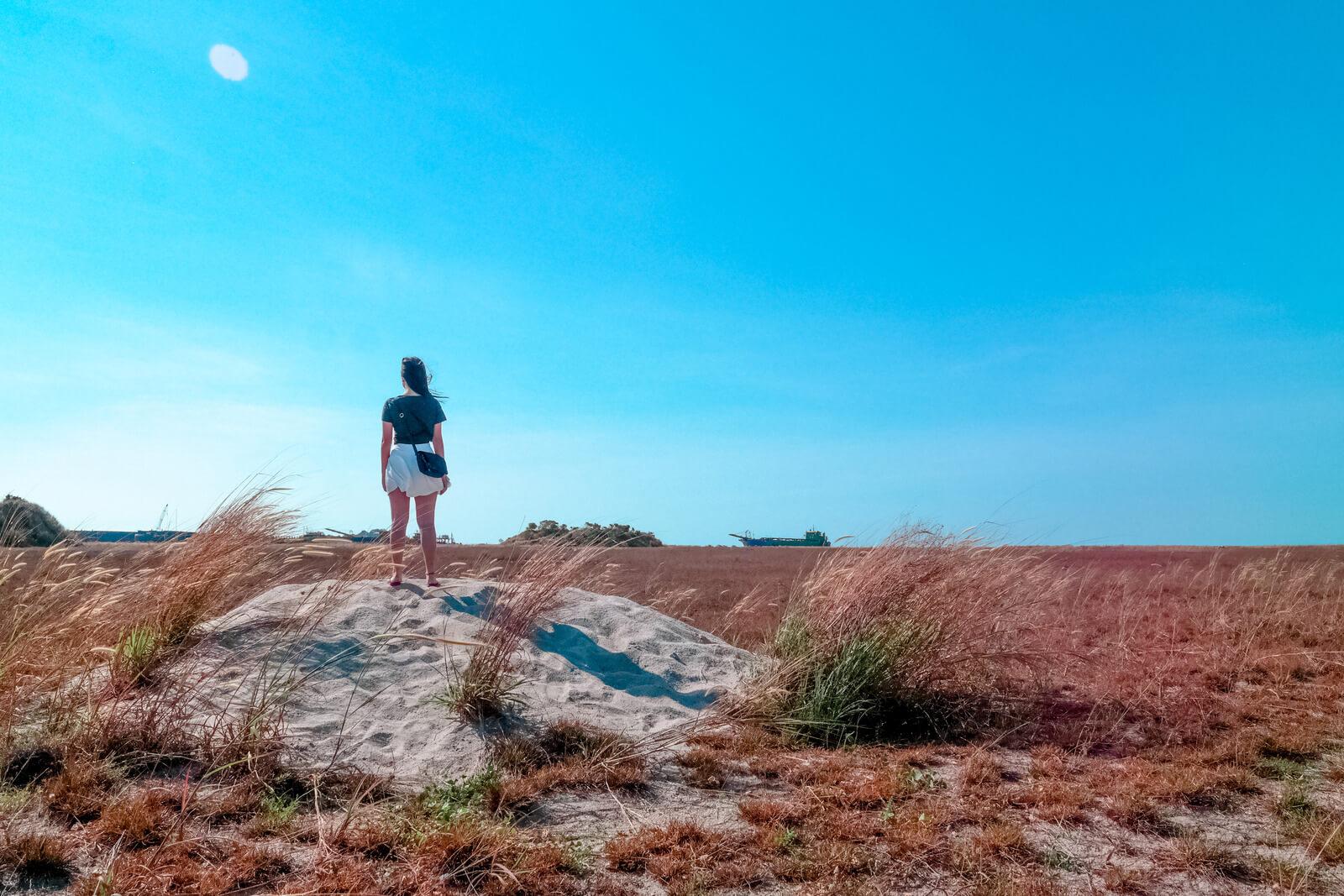 Woman Standing Beside Wheat Field - iPhone camera burst mode