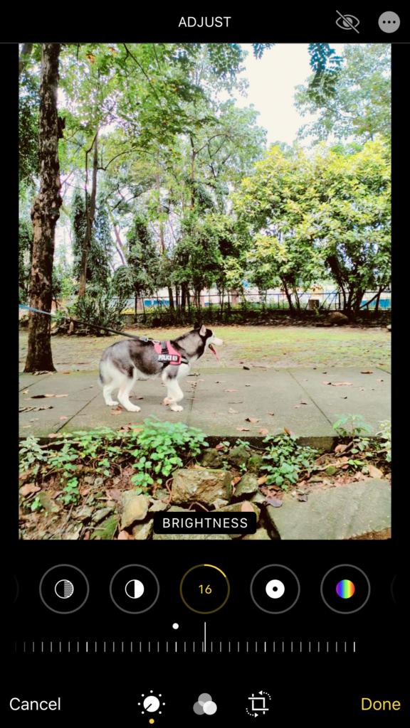 adjusting-brightness